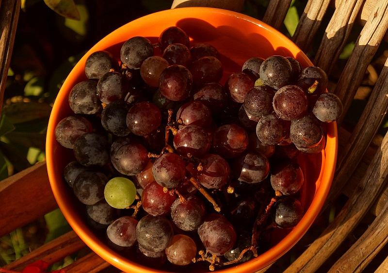 перебранный виноград
