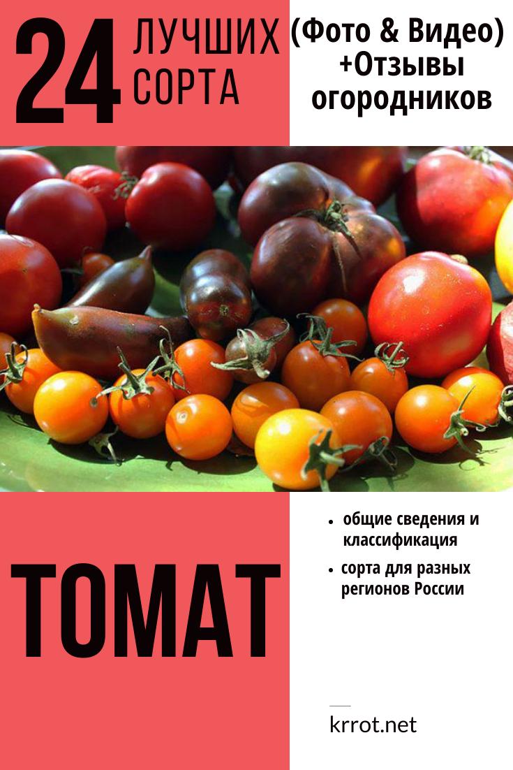 Томат Полным-полно характеристика и описание сорта с фото