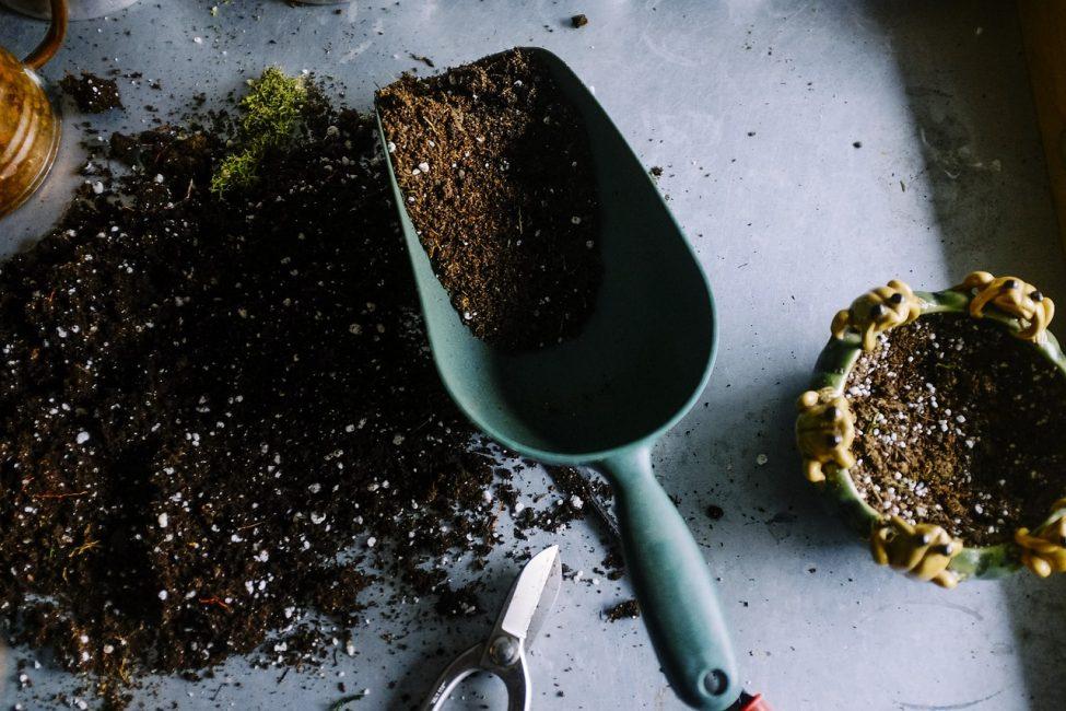 цветочный грунт и маленькая лопатка