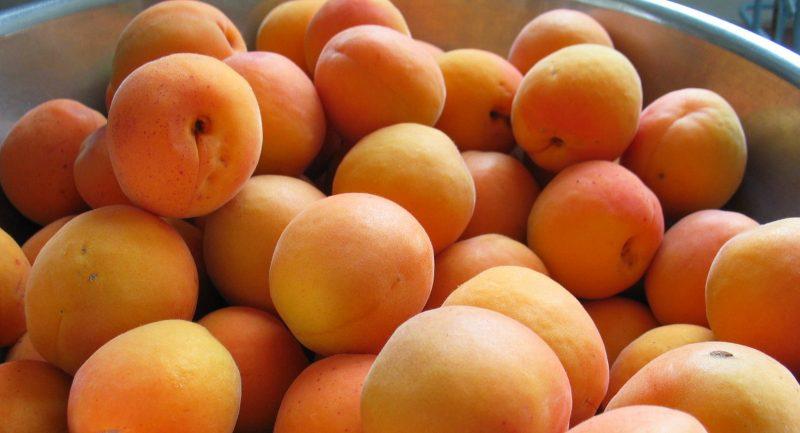 Лескоре абрикос