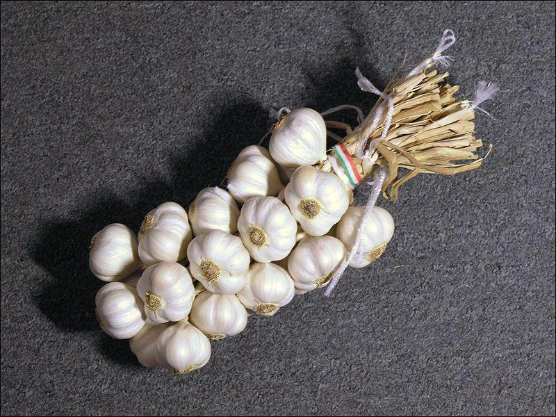 Сформированная вязанка чеснока