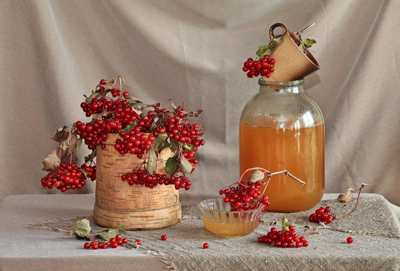 Ягода Калина Красная: и ее полезные свойства и противопоказания, 10 народных рецептов | (Фото & Видео) +Отзывы