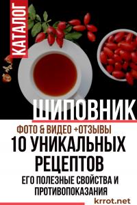 Шиповник — 10 культовых рецептов и его полезные свойства и противопоказания (Фото & Видео) +Отзывы