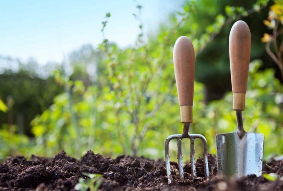 вскопанная земля вилы и лопатка