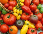 лучшие томаты для теплицы отзывы