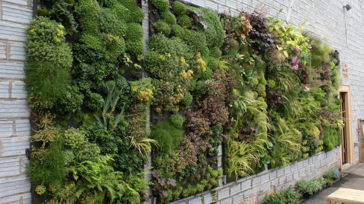 Вертикальные клумбы - это современный способ сделать ваш задний двор похожим на модернистскую живопись.