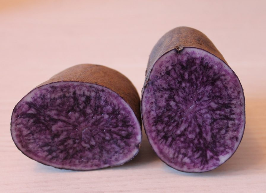 картофель boro