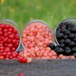 сорта смородины описание
