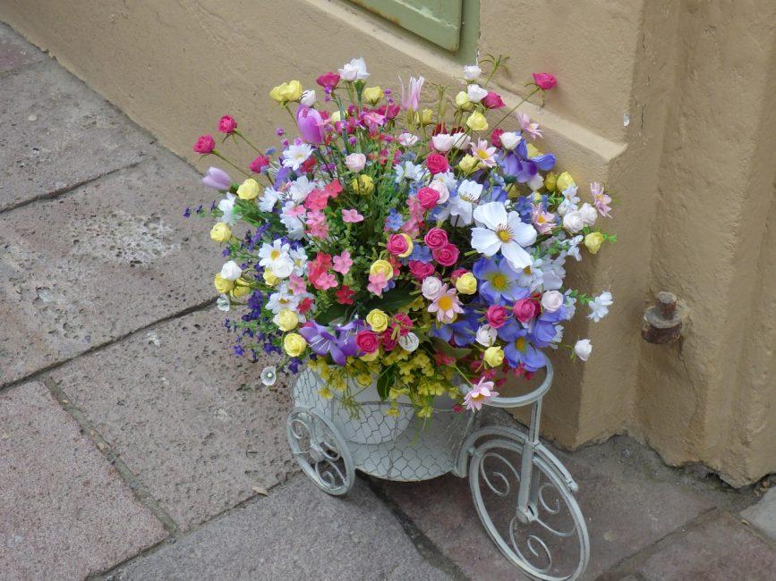 Эстетическая сторона одна из важных в создание цветников.