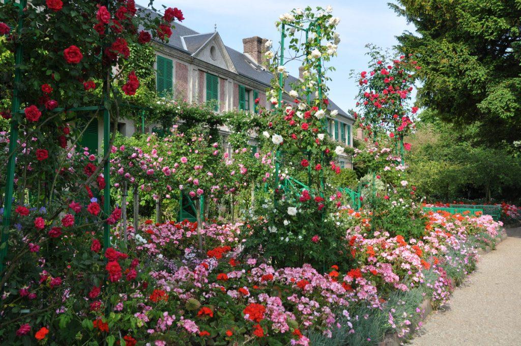 прикольное картинки роз в своем саду полностью