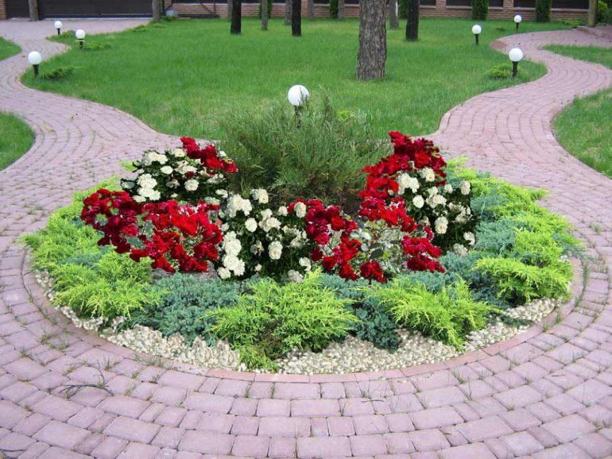 Клумба из многолетних цветов