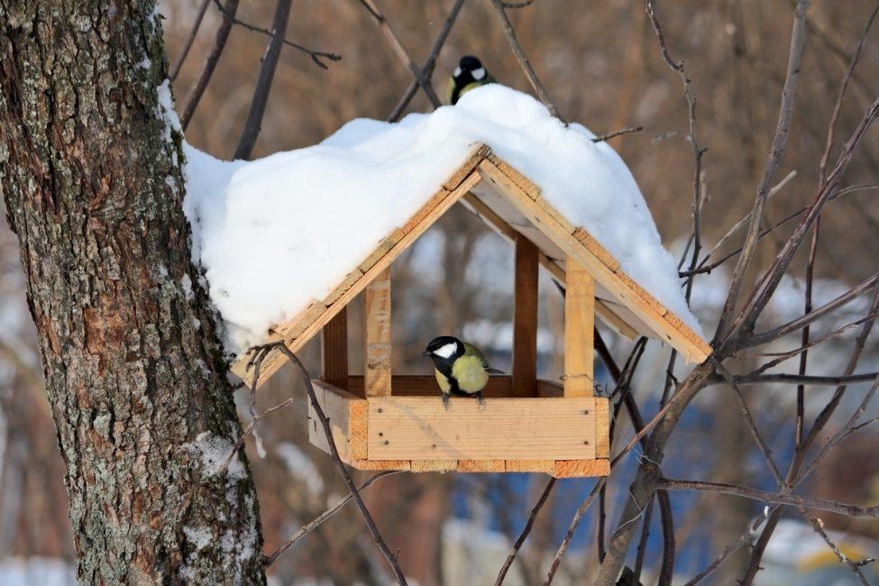 Кормушка укрытая снегом