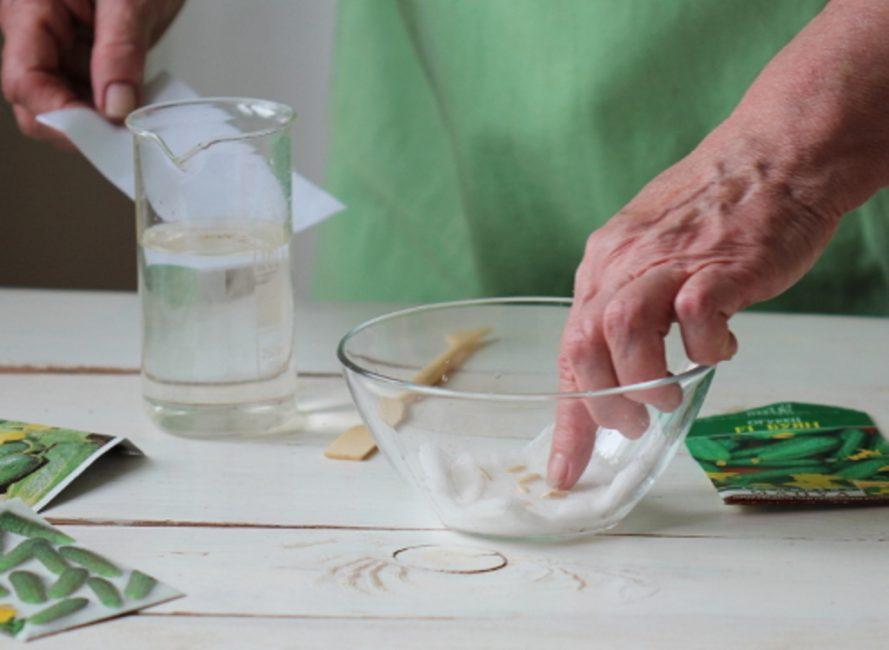 Подготовка семян огурца