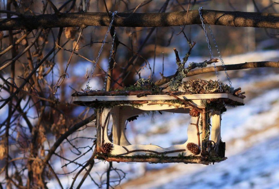 кормушка из замаскированная ветками