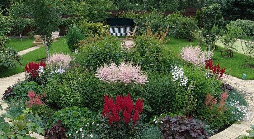Круглая клумба с центральной симметрией и грамотным распределением растений.