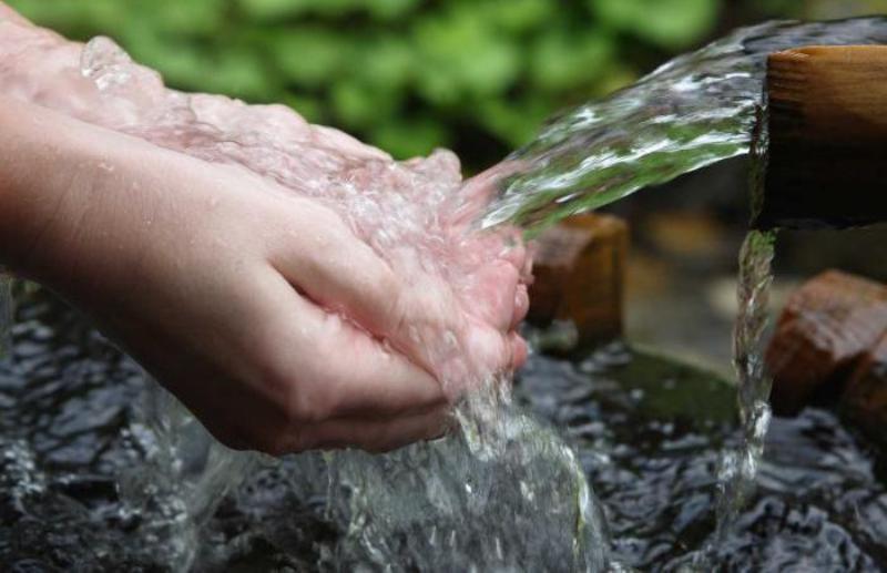 Людям и домашней живности нужна вода хорошего качества