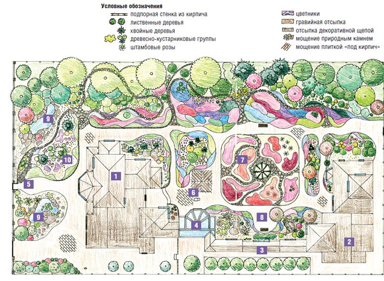 Цветной план участка и его озеленения
