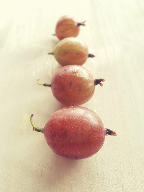 4 ягоды крыжовника