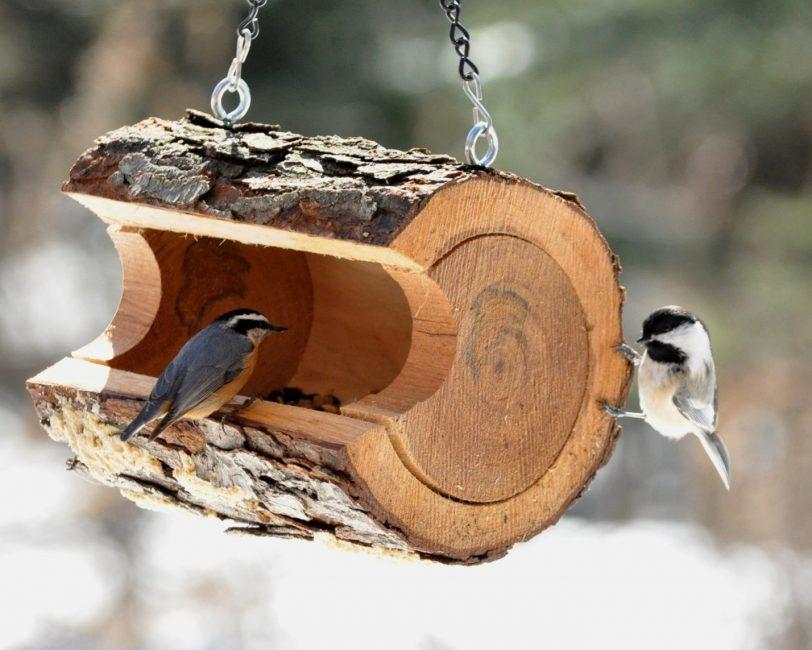 Кормушка из куска ствола дерева
