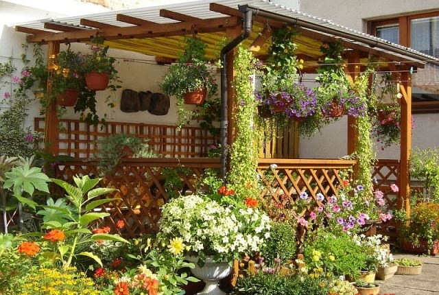 Цветы в горшках и плетущиеся растения украсят и придадут нарядность даже самому простому невыразительному сооружению.