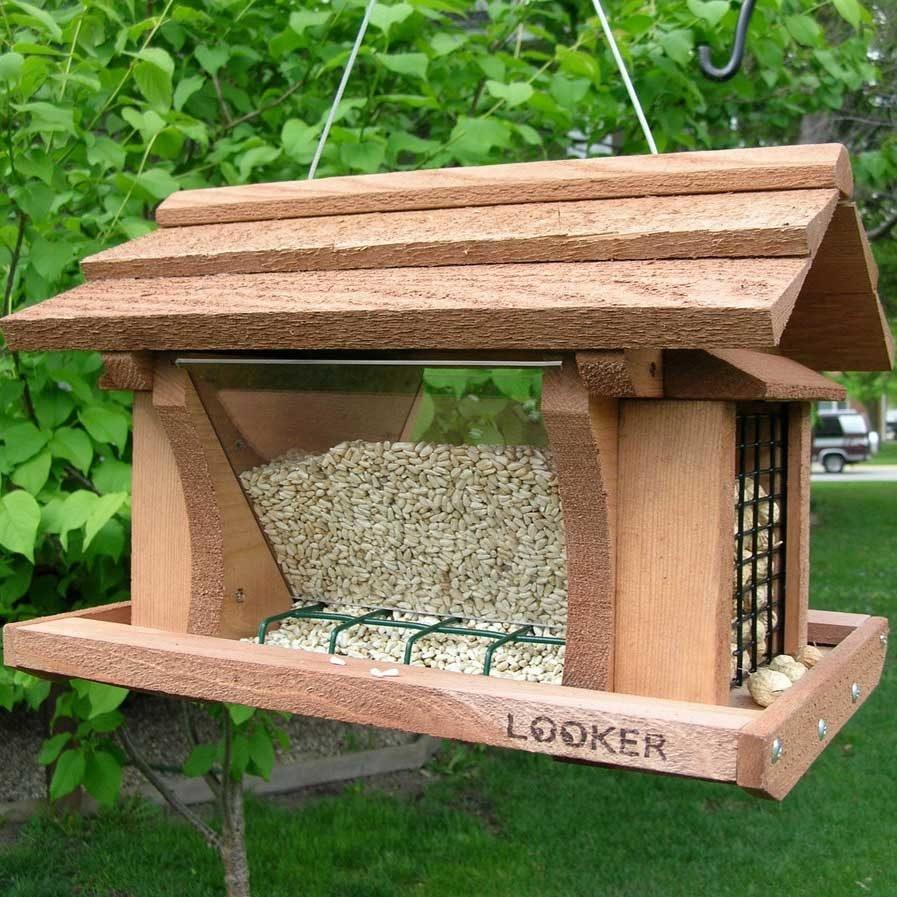 обычной фото кормушек для птиц красивых и легких можно было использовать