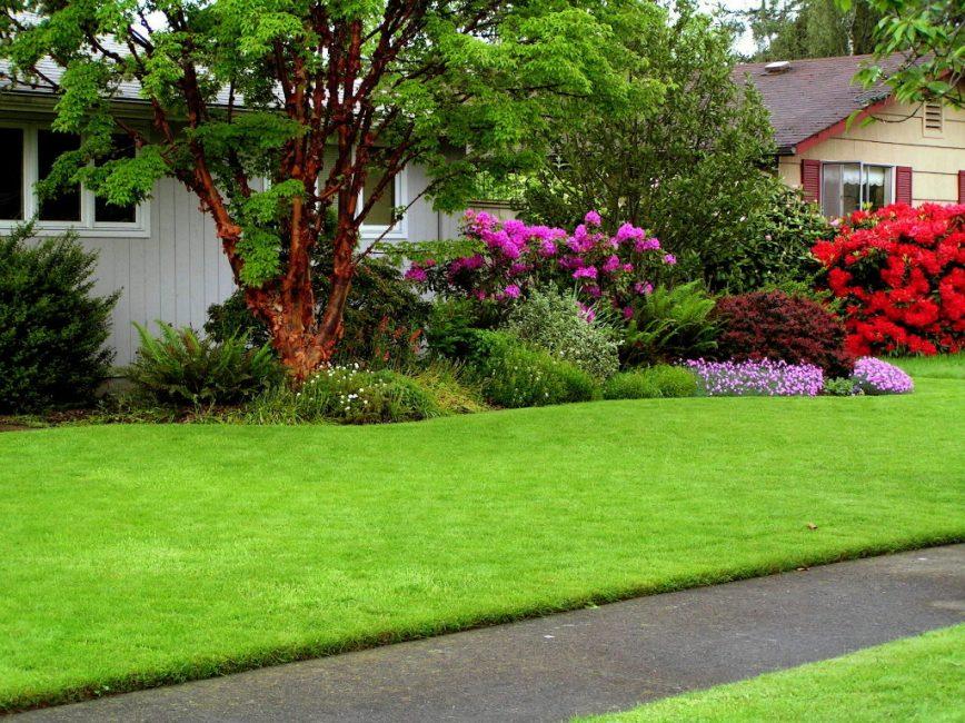 Изумрудная зелень газона обладает потрясающим эффектом, она подчеркивает все элементы сада, скульптуры, одиночно растущие деревца, красную кирпичную плитку на садовой дорожке.