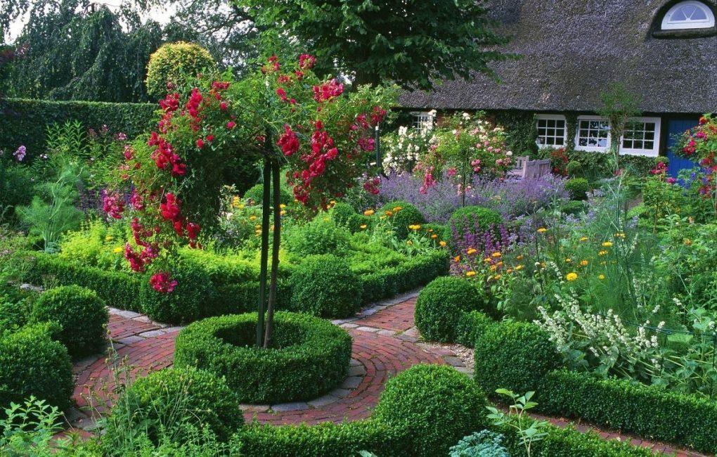 Один из приемов в ландшафтном дизайне - использование плакучих форм деревьев.