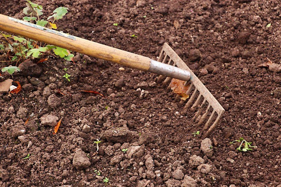 обработка земли граблями