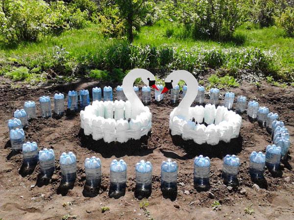Лебеди в саду из пластиковых бутылок
