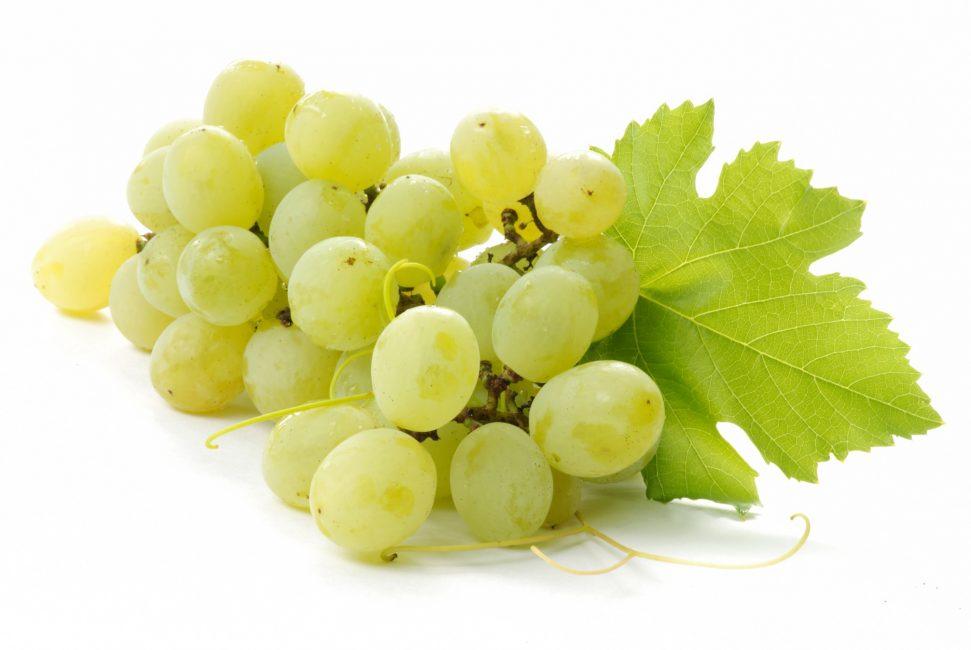 Белый виноград сорт