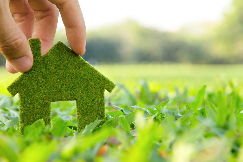 зеленый домик символ экологичности