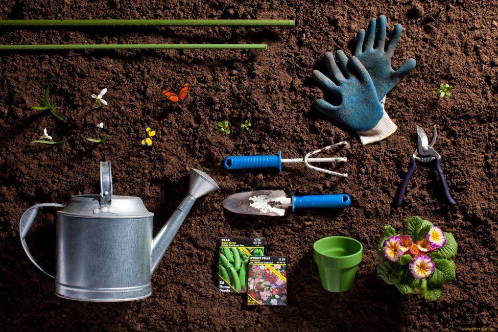 все для посадки комнатных растений