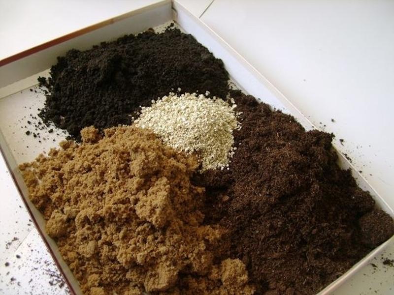 смесь легкой почвы для рассады