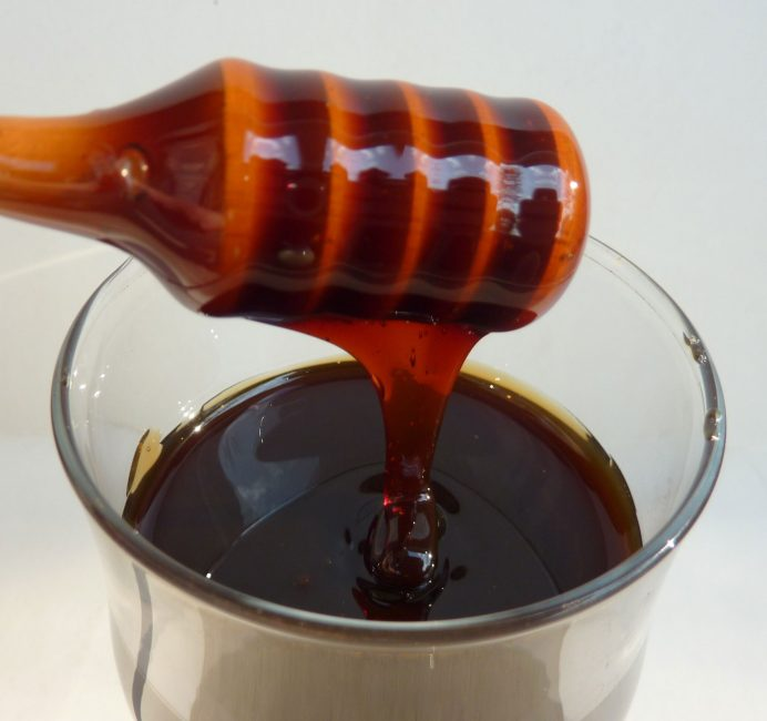 Мед черноклена