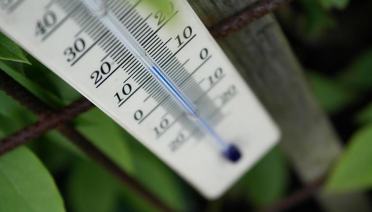 Зимой нужно снизить температуру до 15 градусов.