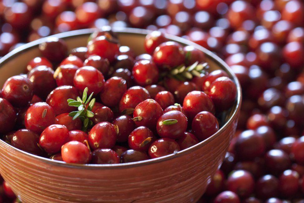 Красивые ягоды клюквы