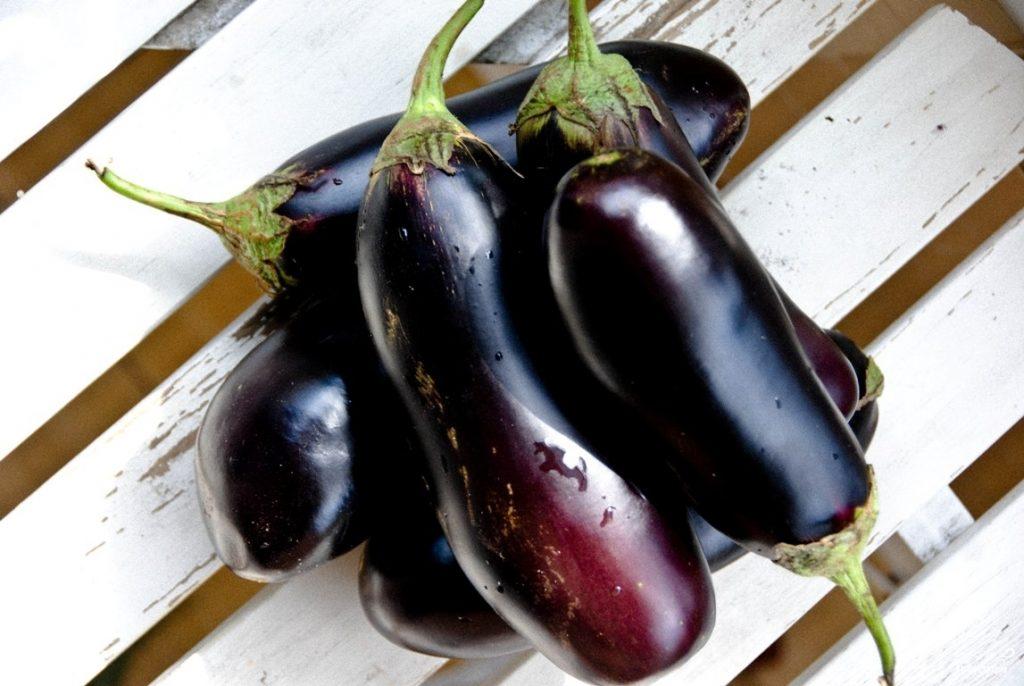 Баклажан галич описание и характеристика сорта урожайность с фото