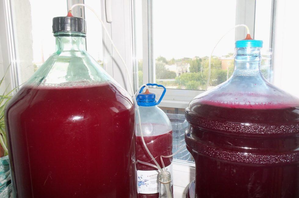 Процесс приготовления домашнего вина из клюквы