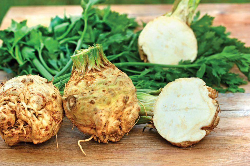 Длительность вегетационного периода этого овоща зависит не только от разновидности, но и от климатических условий