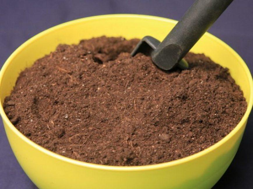 При выборе грунта важно обратить внимание на его состав