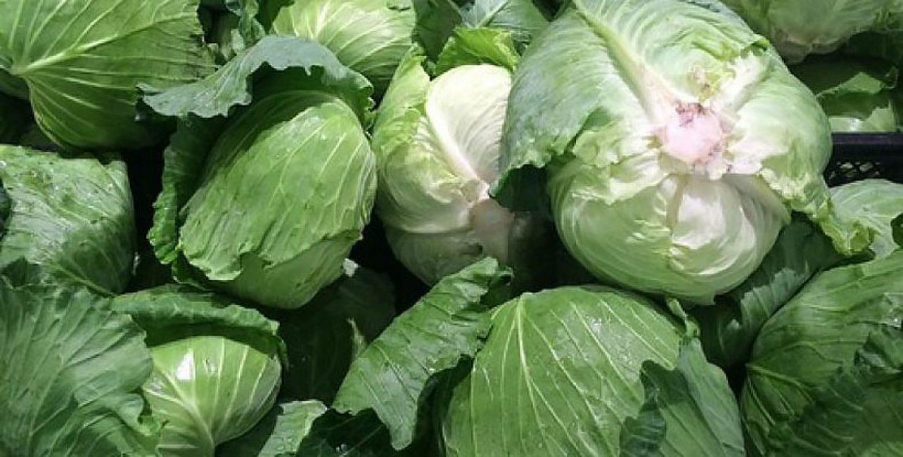 Капуста Романеско: особенности сорта, секреты выращивания