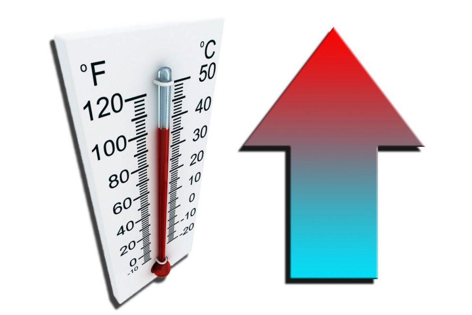 Для катарантуса комфортной будет температура 25 градусов летом и 18 градусов зимой.