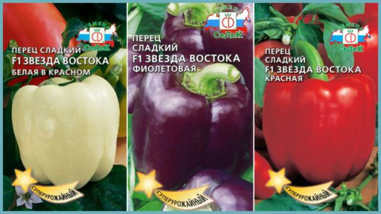Сортовая серия «Звезда востока». Семена в продаже.