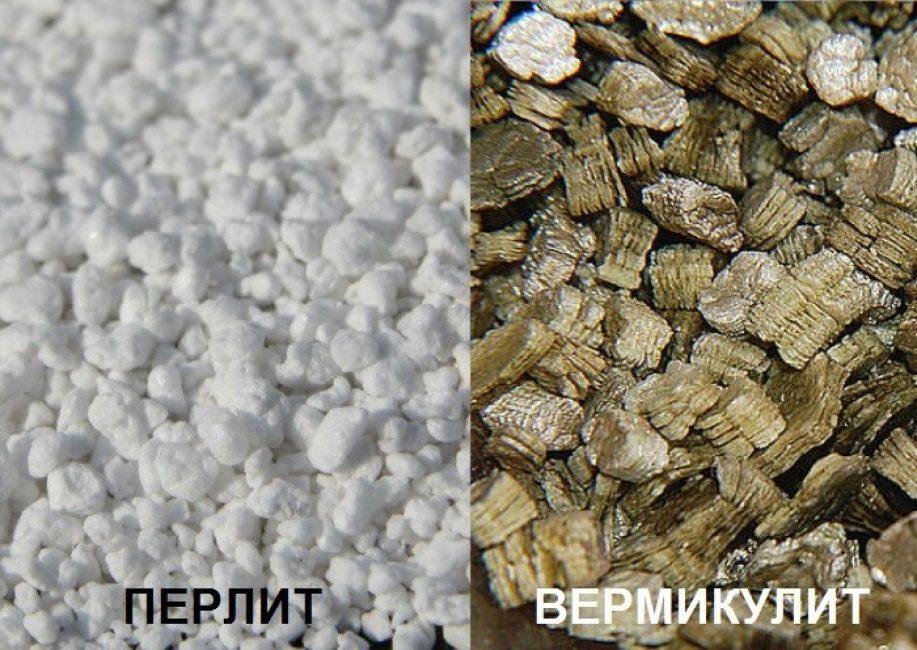 Сравнение перлита и вермикулита