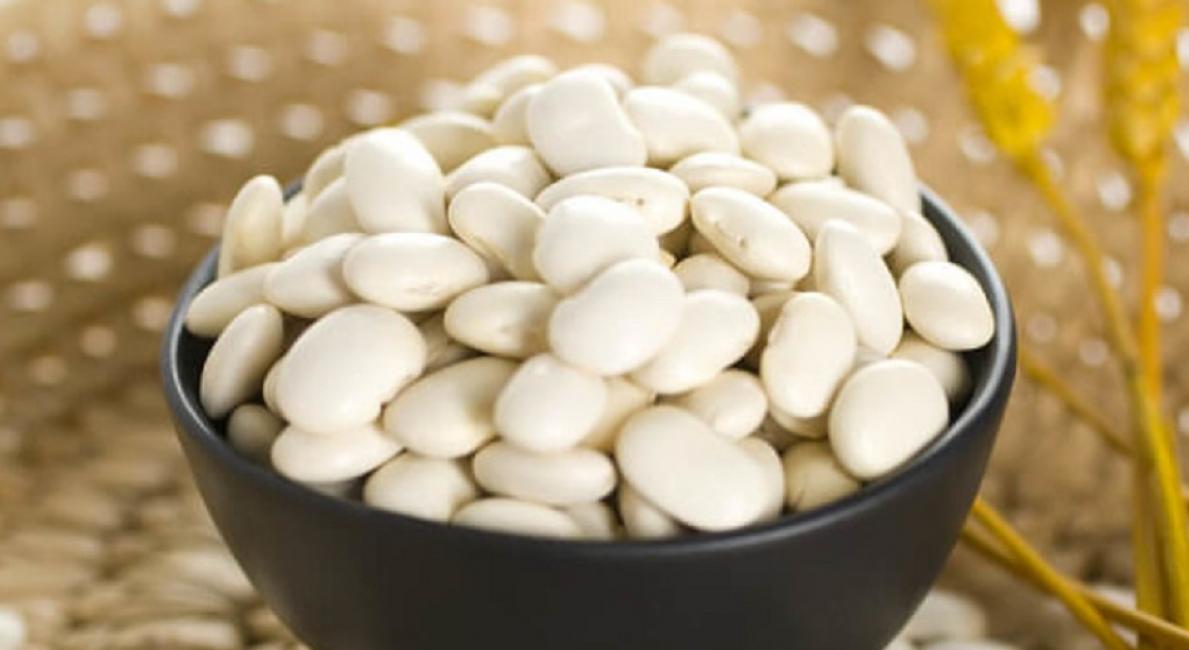 Белые бобы с крупными белыми зёрнами – Чали, фавориты по калию и кальцию с высоким содержанием противомикробных веществ