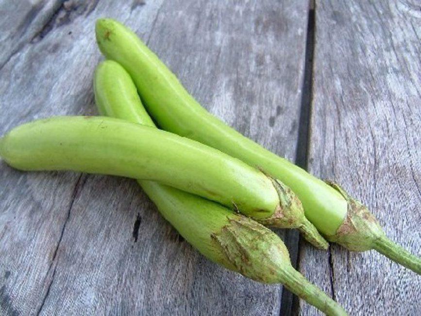 Тайский зеленый сорт баклажан