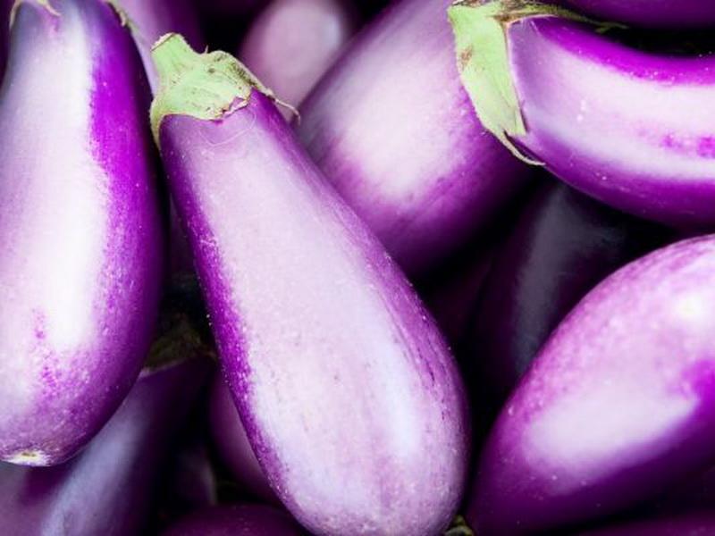 Сиреневый сорт баклажан