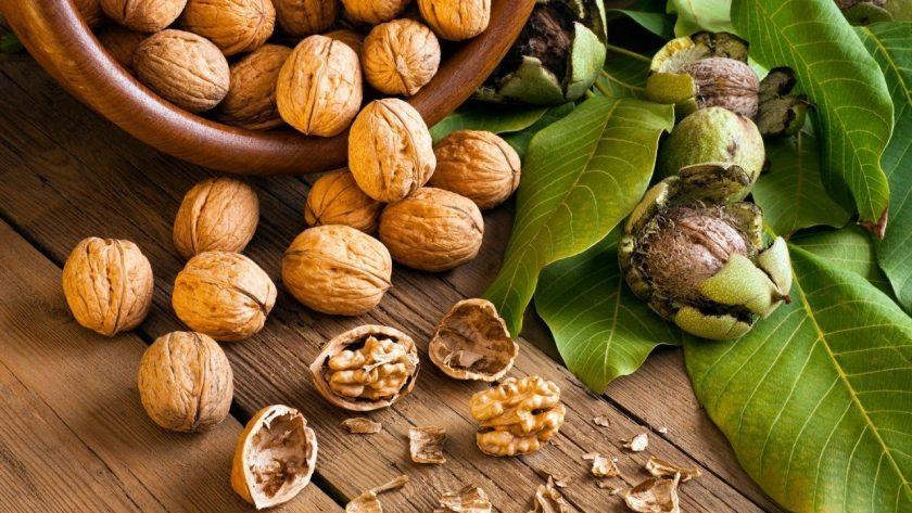 Какие полезные свойства грецких орехов