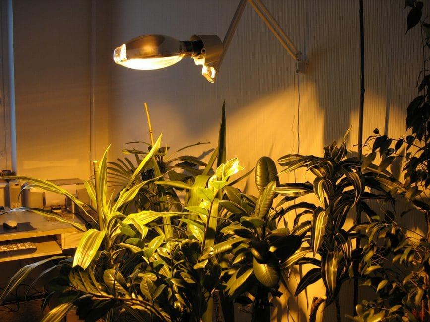 Пример искусственного освещения