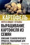 Выращивание картофеля из семян: нужно ли оно? Полное описание технологического процесса, подходящие для этого сорта (Фото & Видео) +Отзывы